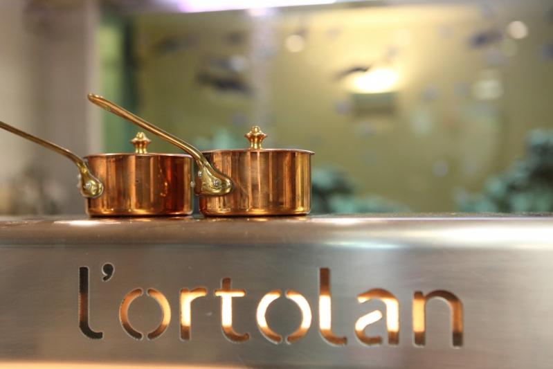 Lortolan Review Copper Pots on Kitchen Top