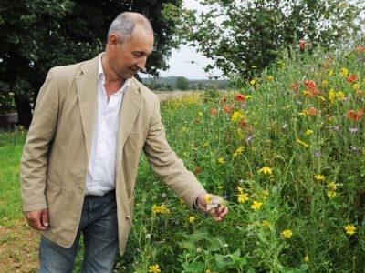 James Gillies Countryside