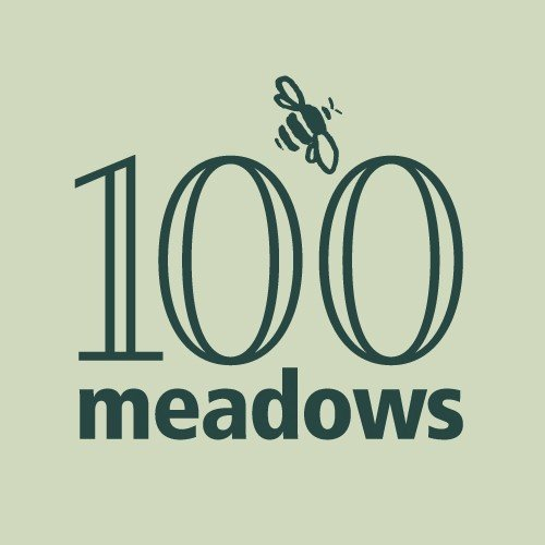 Wildflower Meadows Maintenance 100 Meadow Project