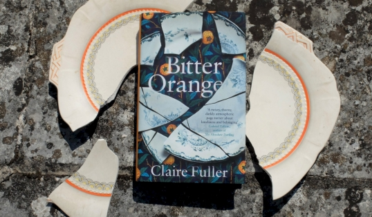 The Best Reads For Making You Feel Uneasy Bitter Orange UK hardback
