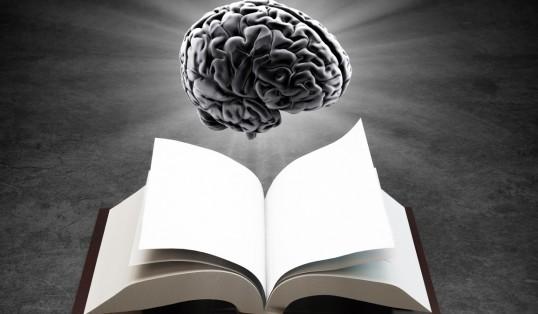Page Turner April Brain Book