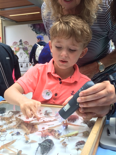 Operation Earth Child examining bugs