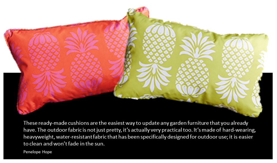 Penelope Hope Pina Colada Cushions