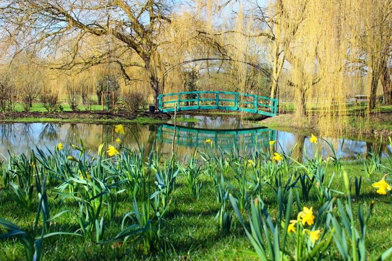 The Oxfordshire Gardener Lake View Garden Design